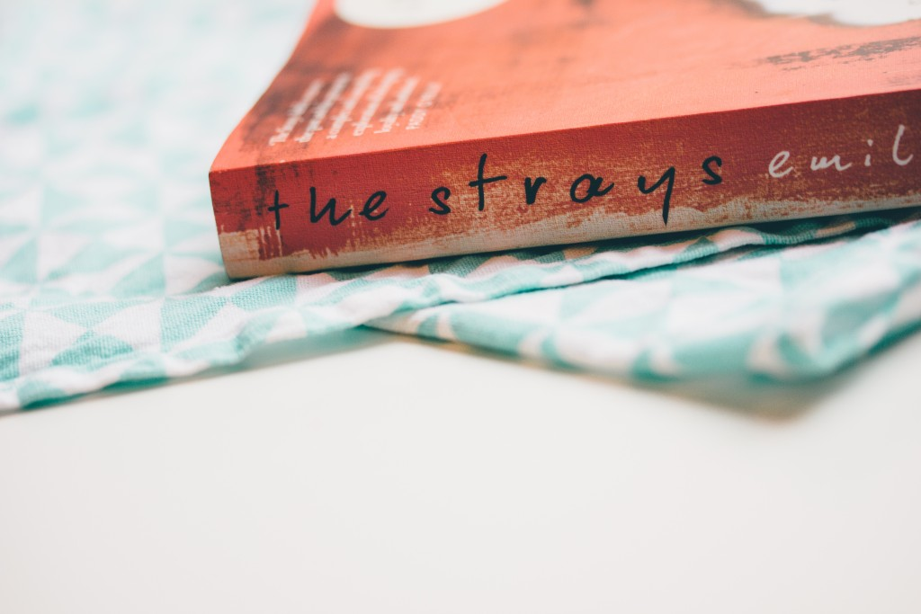 Little Wanderings - Books and Baking The Strays by Emily Bitto 3