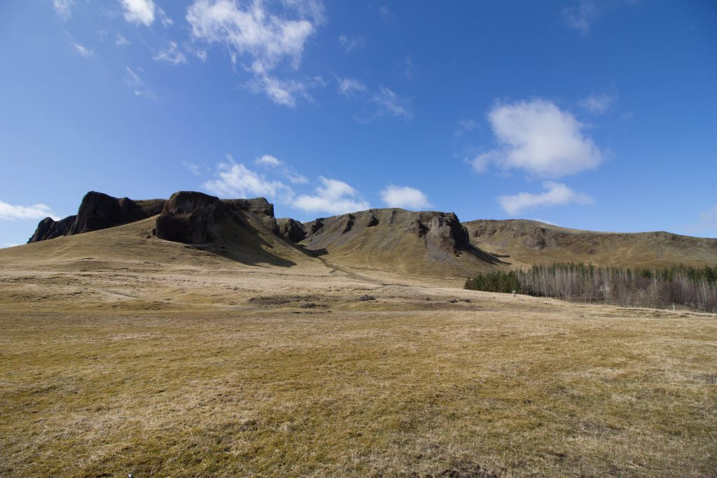 little-wanderings-kirkjugolf-iceland-1